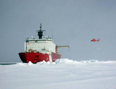 arctic ocean biodiversity news. Black Bedroom Furniture Sets. Home Design Ideas